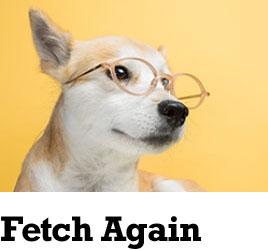 Fetch Again